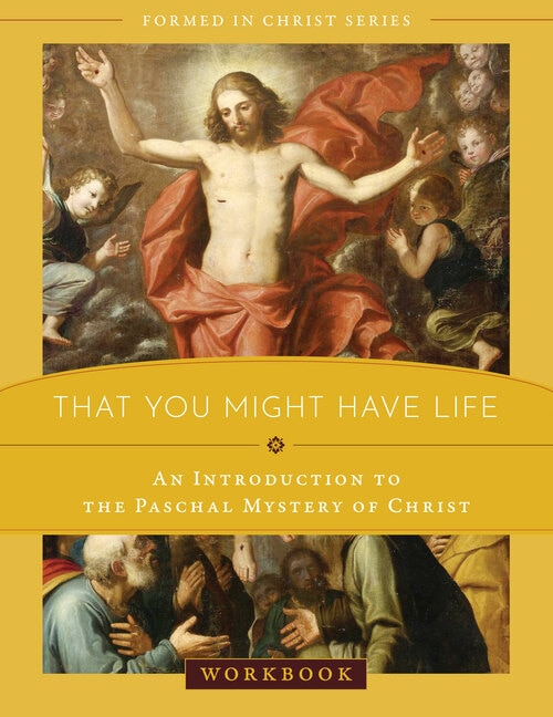 Formed in Christ: That You Might Have Life Workbook